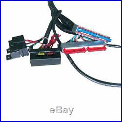 1997-2006 Dbc Ls1 Standalone Wiring Harness T56 4.8 5.3 6.0 Vortec